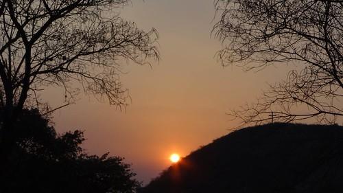 trees sunset sky naturaleza sun sol nature clouds sunrise atardecer arboles cielo tarde anaranjado rosado sinshine reservanatural formasnaturales crepusculonauticovespertino
