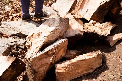 12firewood.jpg