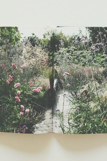 BookLOVE heute Kleine Gärten optimal gestalten 05 small