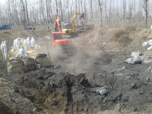 根據新京報後續報導,在劉玉英承包農田清理出來的廢棄物高達500噸以上。