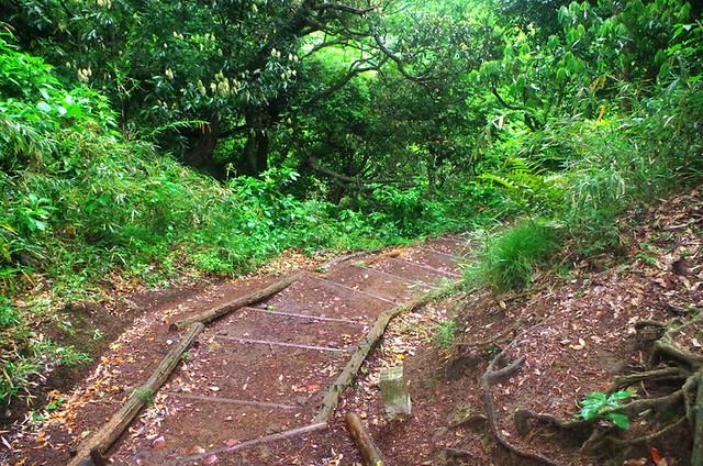 toomilog-tengoku_Hiking_trail019
