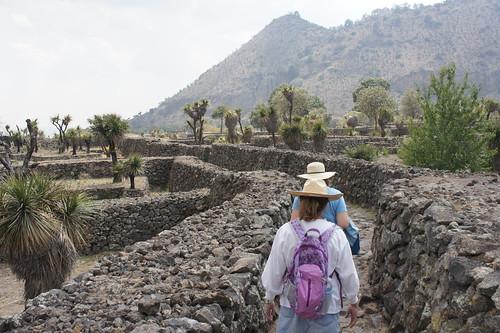 At Cantona Arqueological Site