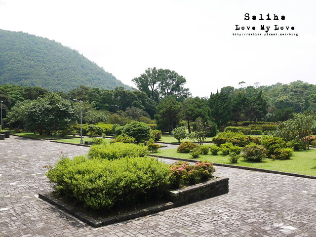 陽明山踏青一日遊景點 第二停車場杜鵑茶花園 (4)
