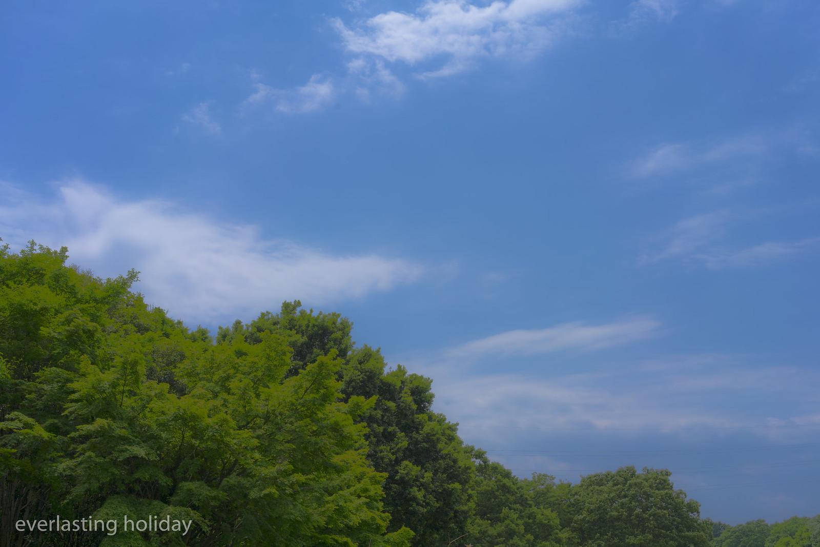 小金井公園 Koganei Park-0023
