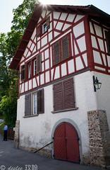 Day #6 - Switzerland (Rheinfall)