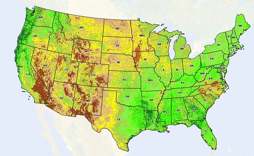 The current vegetation index across the United States. NASS uses satellite images like these to look at weekly crop progress.