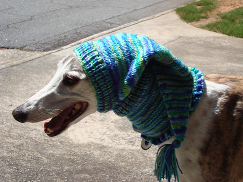 Blue-Green-Purple Pointy Greyhound Hood