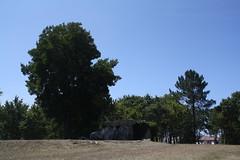 Anta da Barrosa em Vila Praia de Âncora, Caminha