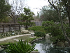 San Antonio Botanical Gardens (475)
