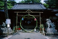 茅の輪 / Chi-no-wa
