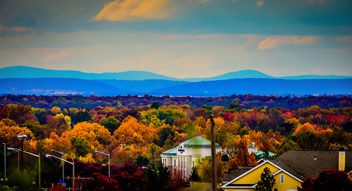 from park county blue trees usa mountain mountains color colour tree fall colors leaves landscape virginia us leaf colours with unitedstates hill hills ridge american va fairfax shenandoah northern range parc centreville chantilly viewed
