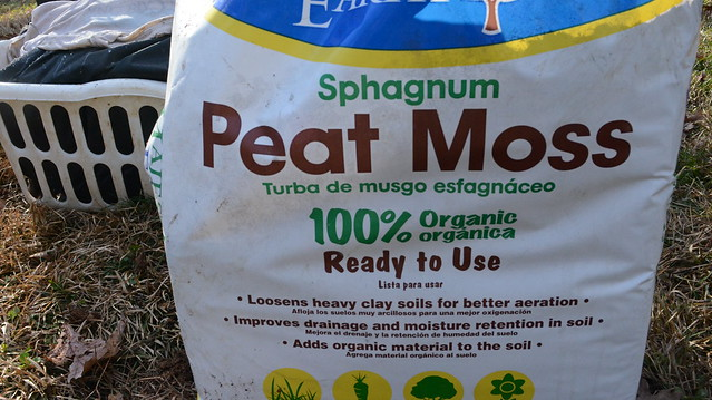 Sphagnum Peat Moss. Photo by Priya Jaishanker
