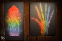 Shok1 X Rainbow