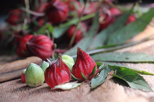 Roselle_Large