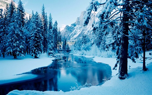 winter picture from Google Images