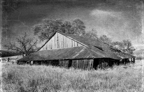 ca northerncalifornia barn rural farm corning