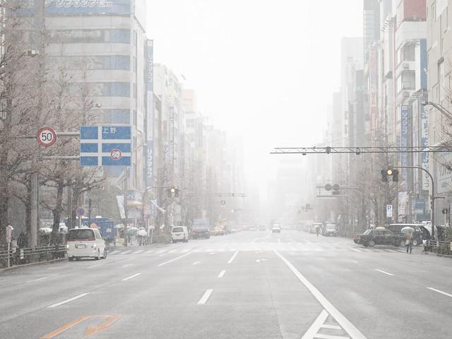 Snow Akiba Noon