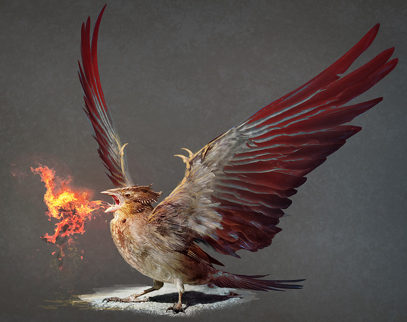 Dragon Sparrow 2
