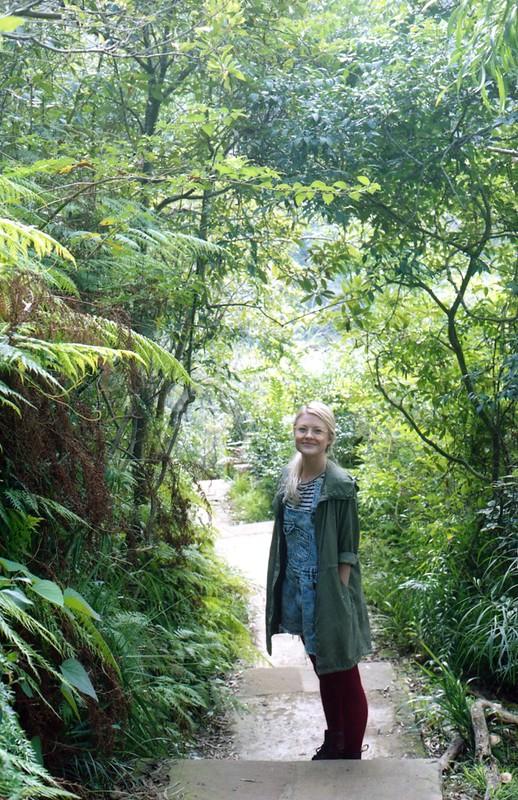 Sydney bush walk