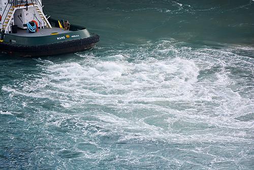 Mamo churning up the water