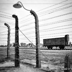 #auschwitz#amazing#polonia#pernondimenticare#world#wonderful#webstagram#27gennaio2015#olocausto#memorial#memory#life#birkenau#orror#ig_polonia#ig_auschwitz#instadavideilfotografo#davideilfotografo#giornatadellamemoria#ebrei#