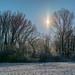 Ungeheuer Winter 2015