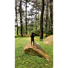 Enjoying the view...  #bogor #indonesia #sentul #photodroid #photooftheday #instadroid #mountain #forrest #pine #kids #kid