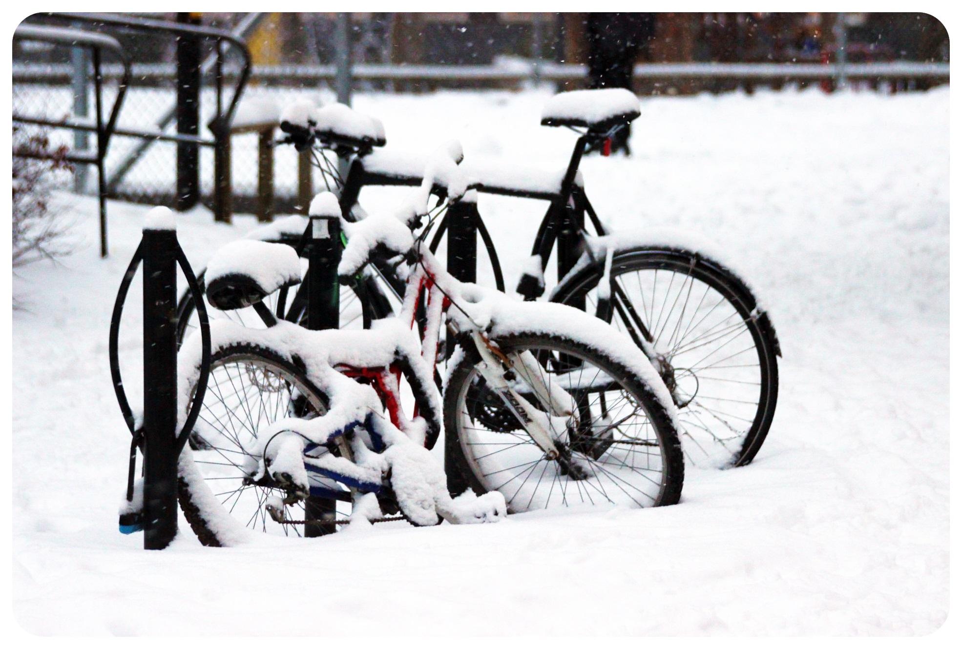 snow bikes stockholm sweden