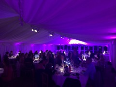 Purple Uplighting at The Inn at Whitewell