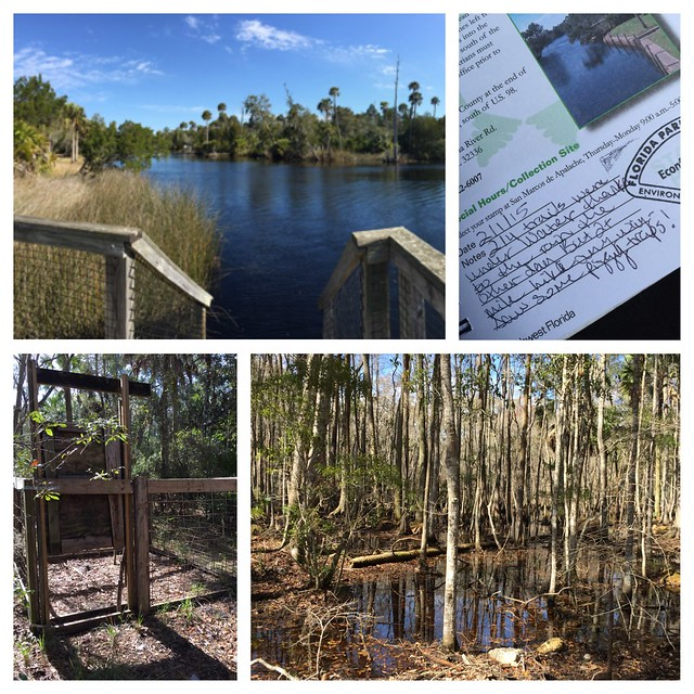 Econfina River State Park Lamont, FL