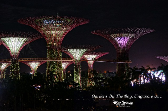 Singapore - Gardens By The Bay 23