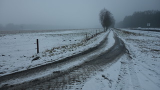 Snow Rut