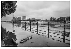 Paris, les pieds dans l'eau (2016)