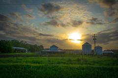 Georgia Farm at Sunset
