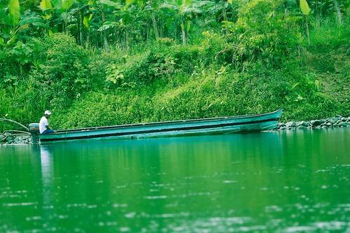 river green rio verde nature