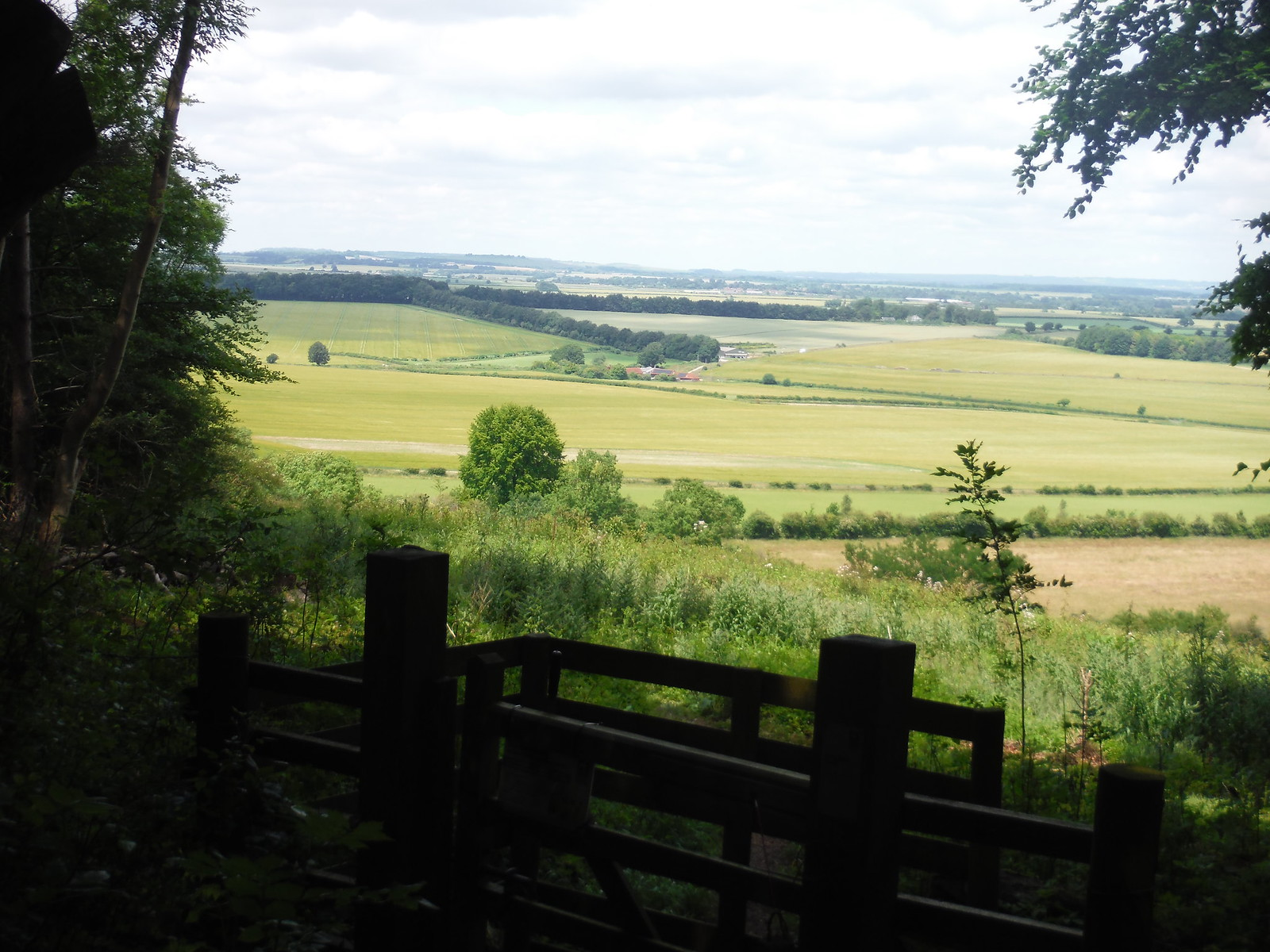 Wallop Brook Valley from the wood on Broughton Down SWC Walk 265 - Dean to Mottisfont & Dunbridge