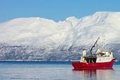 Skitouren Norwegen mit Schiff/Boot Lyngenalps. Foto: Die Bergführer.