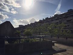 Unusually lush brutalism #alexandraroad #gradeii #london #architecture