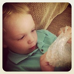 Bubble Wrap – Keeping toddlers occupied since 1957.