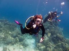 Paula diving 2