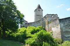 Burg Seebenstein 12.6.2013
