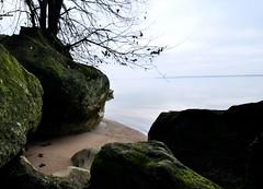 On the banks of the Potomac