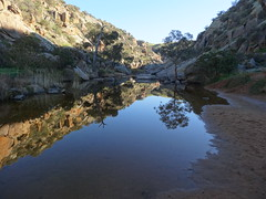 Mannum waterfalls but only briefly when it has rained a lot. Morning Reflections South Australia.