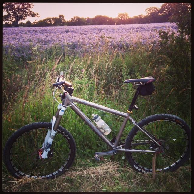Summer Evening Ride