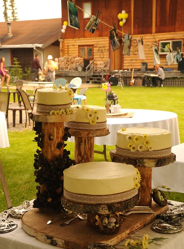 Outdoors traditional country style: wedding cakes, yellow icing with daisies, displayed on logs with family antique silver (silverware & mirrors), birds nests with blue eggs, white table cloths, log house, Wedding of Jessie and Chris, Fairbanks, Alaska, U by Wonderlane