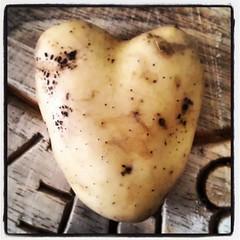 Love food :)