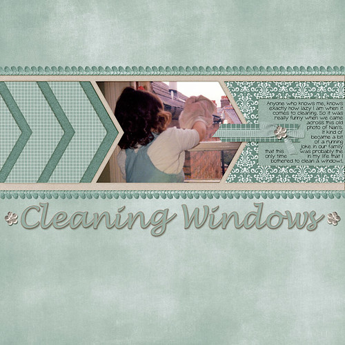 Cleaning Windows by Lukasmummy