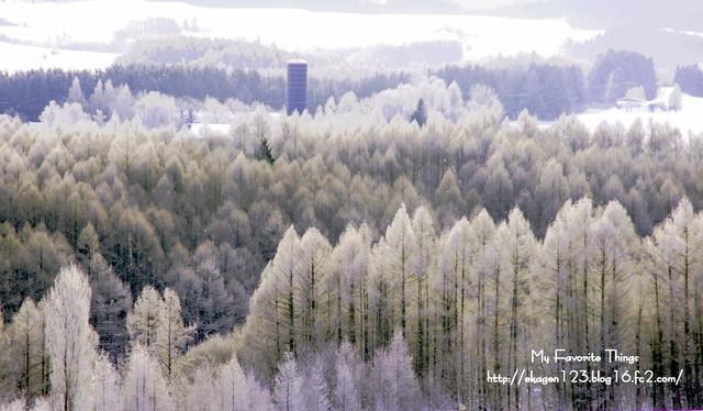 2013 冬⑤