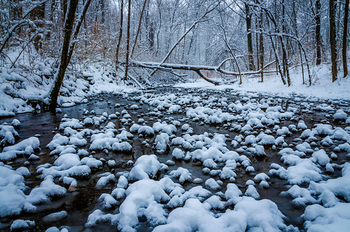 trees winter ohio snow tree nature water horizontal forest woodland river outdoors photography stream unitedstates cincinnati flowing whater wintonwoods greatparks posnov viktorposnov