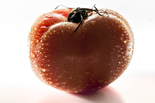 Tomato by petetaylor